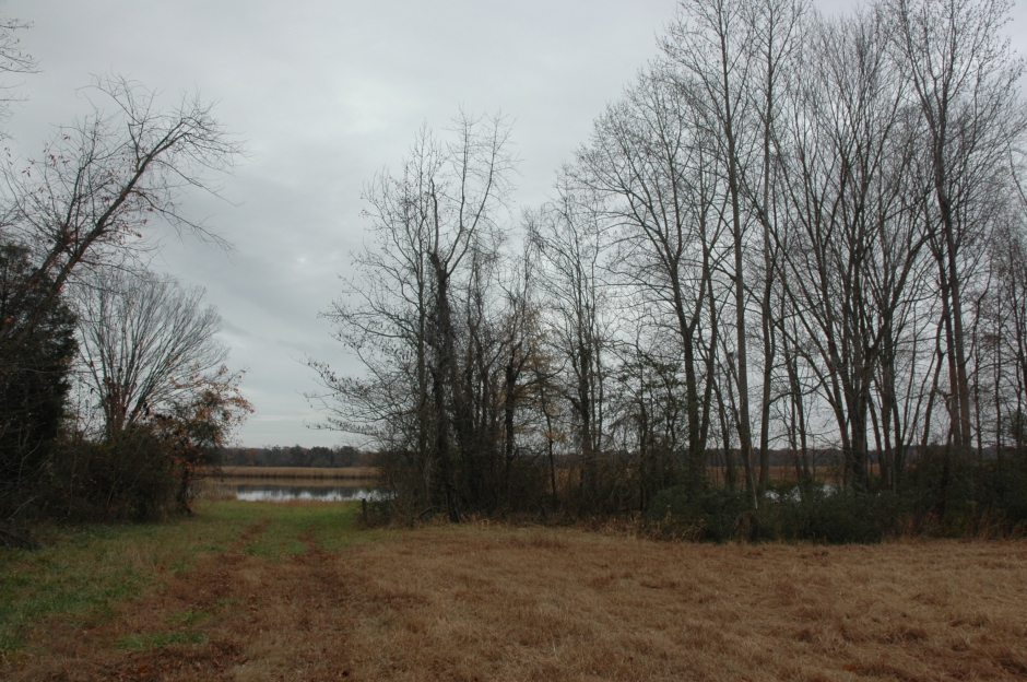 Approach to site of Magruder warehouse, at end of Magruder's Ferry Road. Photo: Margaret Yocom, 2013.