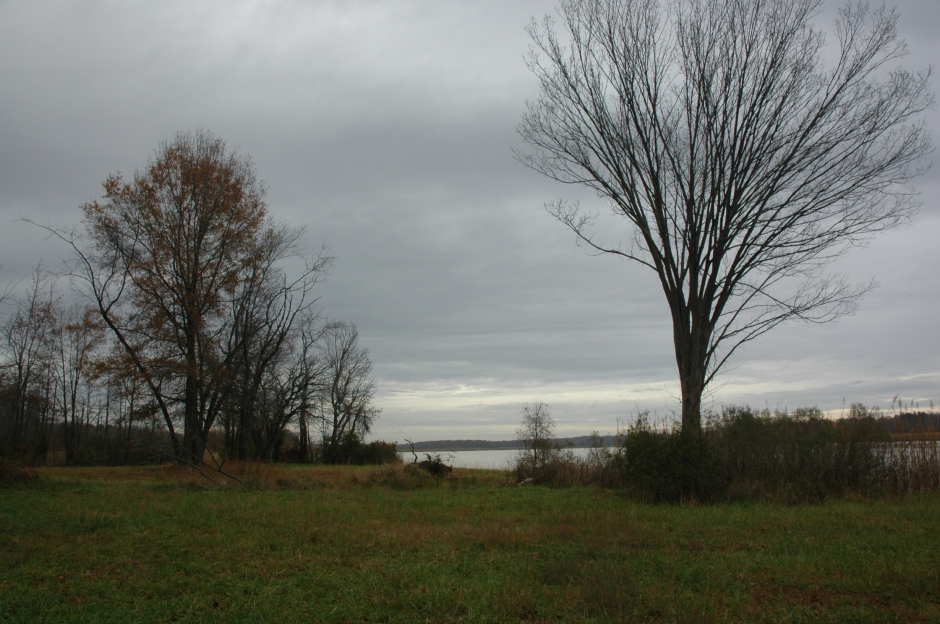 Site of Magruder's warehouse, burned by the British in 1814. Photo: Margaret Yocom, 2013.